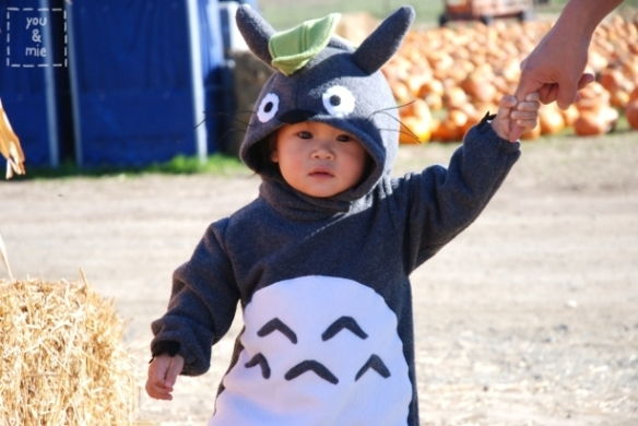 I do not make Totoro Costumes for sale. 0305c9f25