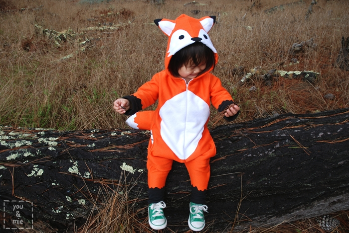 I decided not to make a Swiper costume but just a regular ol fox. I have to say Iu0027m pretty pleased with how it came out! & Happy Halloween from my sneaky lil fox! | you and mie