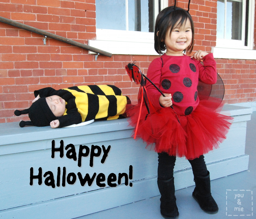 ... halloween you and mie ...  sc 1 st  The Halloween - aaasne & Swiper The Fox Halloween Costume - The Halloween